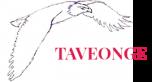 Taveonge